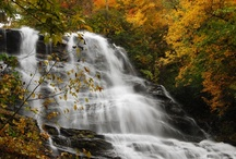 Amicalola Falls  / Come see the highest cascading waterfall east of the Mississippi River and all it has to offer!