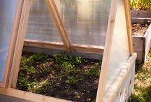 garden green houses