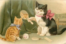 Vintage cats pictures