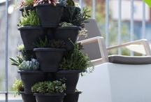 Haus & Garten / In diesem Board findet Ihr regelmäßig unsere aktuellen Produkthighlights aus den Kategorien Haus & Garten!