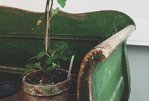 Gardening loove. (: