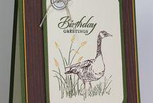 Cards - SU Wetlands & High Tide
