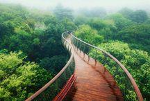 ponte encantada