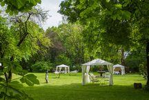 Ogród / Endorfina Foksal - bajkowy ogród w centrum dużego miasta