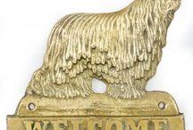 Komondor, Mop Dog