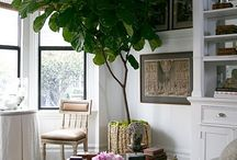 Ideas for our Foyer