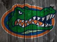 GOD MUST BE A GATOR TOO CUZ THE SUN IS ORANGE AND THE SKY IS BLUE / CHOMP CHOMP / by Ashleigh Moore