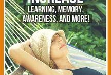 Napping can  increase memory