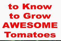 Gode tip til grøntsagsdyrkning / Billige løsninger