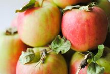 Fruit :: Seasonal / Fresh and ripe in the Pacific Northwest