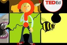Discovery in TED