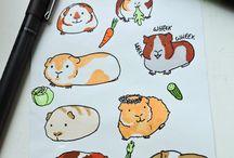rysunki świnek morskich