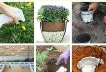 Trädgårds tips