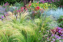 Gardens > Grassy