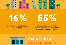 All About Pets By The Pet Door Store / Pets Services | Pet Owners Survey |