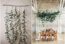 herbs window