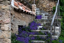 Stairs / by Diane Gallardo-Cannella