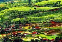 I Love Bogor
