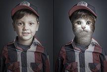 Digital Photography / by Julie Evoy