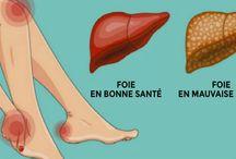 detox du foie