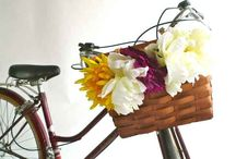 Pimp my bike / by Rebecca Verstegen