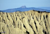 Desert Environments Reference
