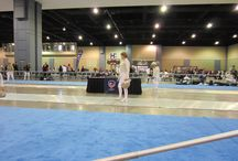 Fencing Tournaments / Pictures of Salle Green fencers at state (Division), Regional, and National tournaments.