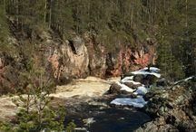 Oulankajoki river / Finland National park Oulanka