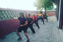 Kung Fu ,Martial Arts / The training for Kung Fu consists of: #Shaolin Kung Fu Basics #Shaolin Forms and their applications: weapons, animal forms and fist# Shaolin Boxing (Sanda)#Acrobatics#Power Training #Power Stretching #Endurance Training #Restling #http://learn-shaolinkungfu.com/
