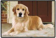 Golden Retriever  / Golden Retriever Memorabilia