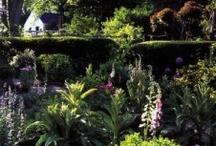 Good Reads / by Garden Conservancy