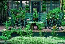 Garden Gleanings / by Shauna Calhoun