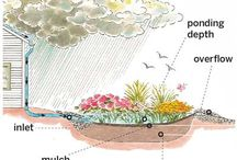 雨水花园Bioretention/ Rain Garden