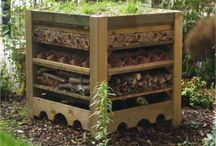 Bug house ideas