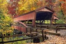 Bridge Beauties / by Sandie Sturdivant Steadman