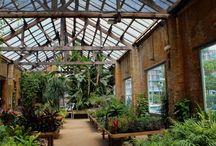 Garden: structures: greenhouse