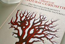 Every Designer Uses this book - Albertus Seba's Cabinet of Natural Curiosities