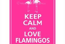 Flamingo love. / by Corina Flores