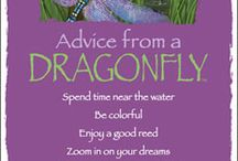 advice from...