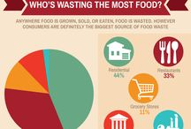 Food Waste Infographics