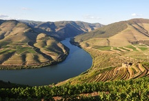 Portugal & the Douro River Valley / by Vantage Travel