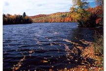 Fall Colors!  / Whitewater Rafting