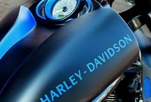 Harley Davison Picture by Maggie Taylor