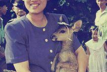 Princess Maha Chakri Sirindhorn
