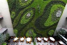 Jardines Comerciales / Los Jardines Verticales son ideales para restaurantes u hoteles en ciudades grandes, introduciendo la naturaleza en los ambientes para establecer convivencia y cotidianeidad con ella.