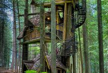 boomhuisjes