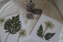 Pretty pressed flowers / Composizioni di fiori pressati ed essiccati