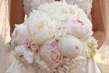 bazsrozsa menyasszonyi