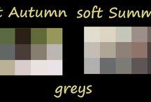 soft autumn vs soft summer