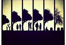 Silhouette / Beautiful Silhouette Images